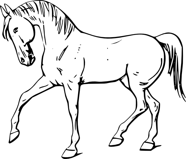 Free farm farm animals coloring pages